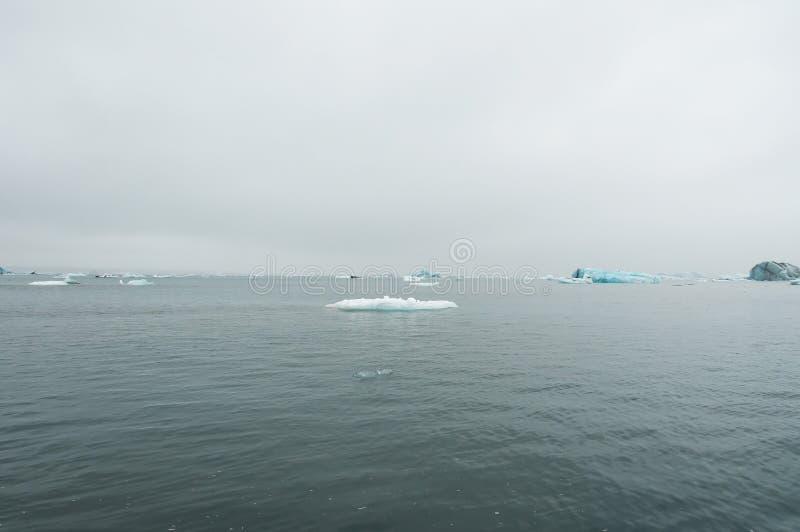 Το Jökulsà ¡ rlà ³ ν είναι μια παγετώδης λίμνη στην Ισλανδία, τοποθετημένος νότος του παγετώνα Vatnajökull, από μια μαύρη παραλ στοκ φωτογραφίες