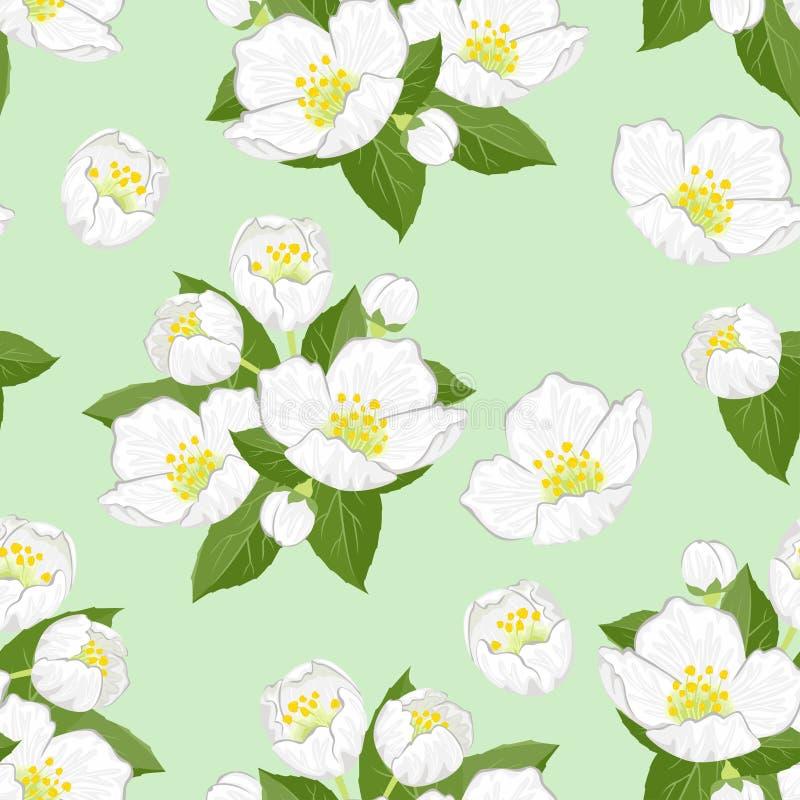 Το Jasmine ανθίζει σε πράσινο φόντο χωρίς ραφή Απεικόνιση άνυσματος διανύσματος διανυσματική απεικόνιση