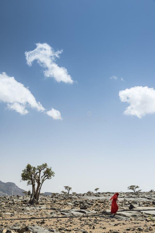 Το Jebel υποκρίνεται τη βεδουίνη γυναίκα στοκ φωτογραφία με δικαίωμα ελεύθερης χρήσης