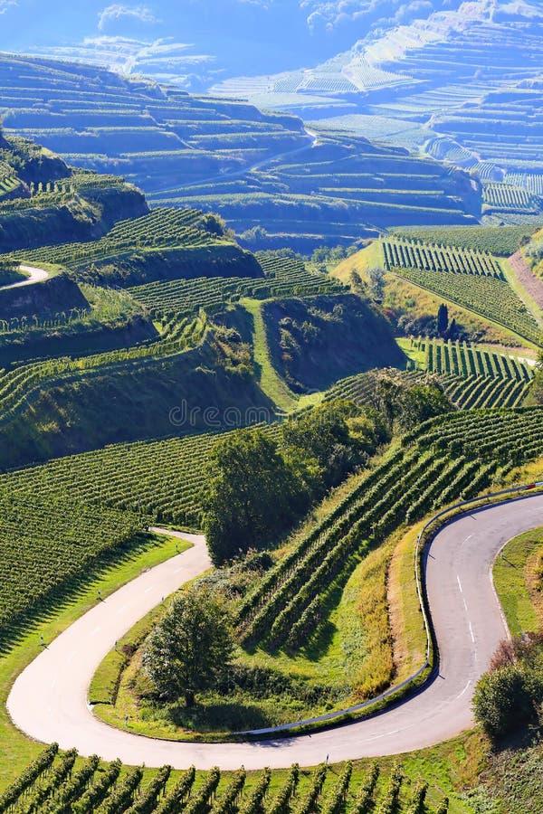 Το Kaiserstuhl είναι μια περιοχή οινοκαλλιέργειας στη Γερμανία στοκ εικόνες