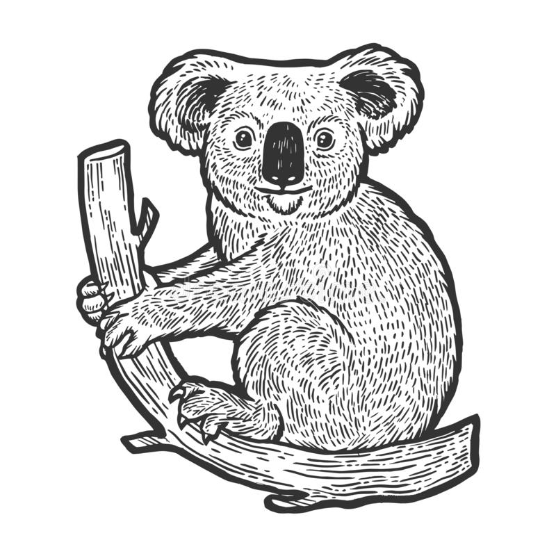 Το Koala αφορά το διάνυσμα χάραξης σκίτσων δέντρων διανυσματική απεικόνιση