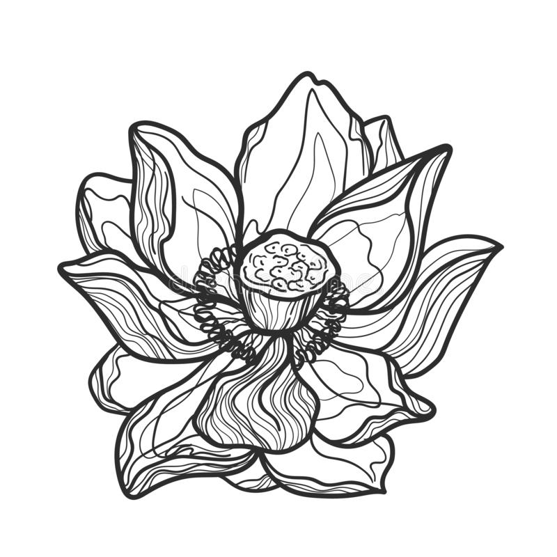 Το Lotus, floral στοιχείο σχεδίου, χάραξε το αναδρομικό ύφος r ελεύθερη απεικόνιση δικαιώματος