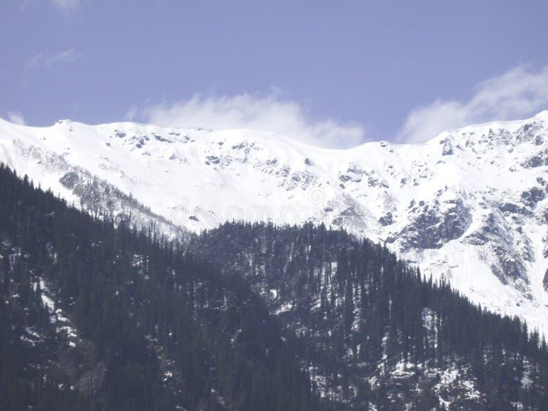 το manali οξύνει το χιόνι στοκ εικόνες με δικαίωμα ελεύθερης χρήσης