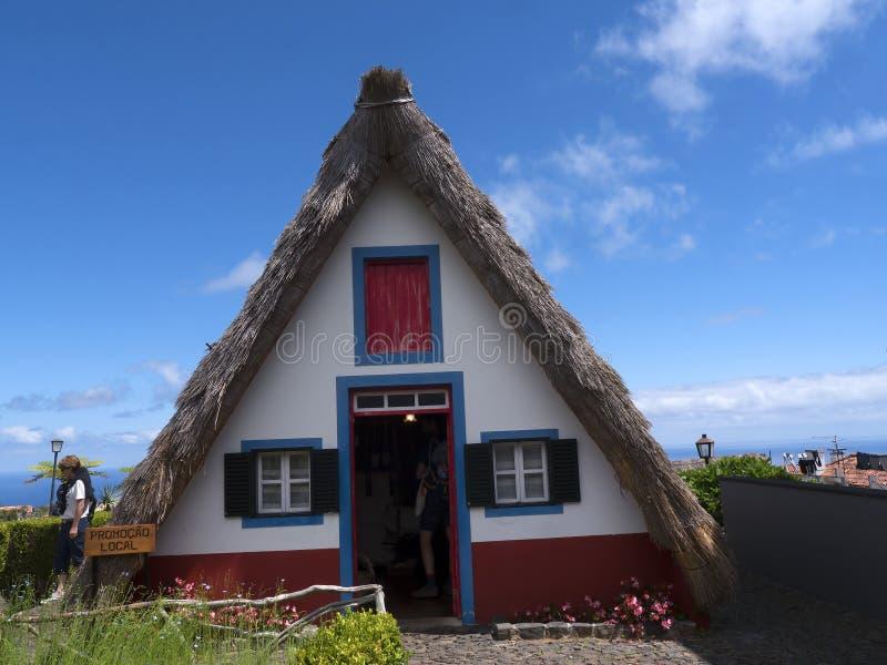 Το Santana στη Μαδέρα είναι ένα όμορφο χωριό στη βόρεια ακτή είναι γνωστό από μικρό του τα τριγωνικά σπίτια Δέντρα δράκων και φ στοκ εικόνες με δικαίωμα ελεύθερης χρήσης