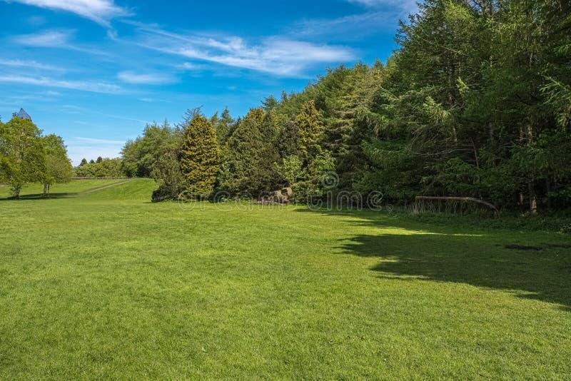 Το Scotlands σταθμεύει τις ανοικτές περιοχές χλόης και την πρασινάδα Lucious που περιβάλλονται από τα ώριμα σκωτσέζικα δέντρα στοκ φωτογραφία με δικαίωμα ελεύθερης χρήσης
