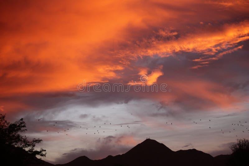 Το Scottsdale ως προαστιακό ranchland, η πόλη έχει γίνει ένας φίλαθλος όμως χαλαρός προορισμός θερέτρου φημισμένος για τις κομψές στοκ φωτογραφία