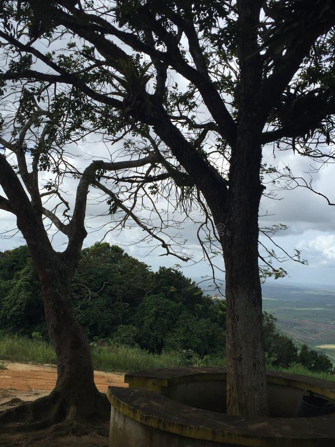 Το Serra κάνει το jundia στοκ φωτογραφία με δικαίωμα ελεύθερης χρήσης