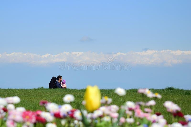 Το Sinagi, Γεωργία, μια οικογένεια περπατά στο μπλε ουρανό και τα άσπρα όμορφα λουλούδια σύννεφων στοκ φωτογραφίες με δικαίωμα ελεύθερης χρήσης