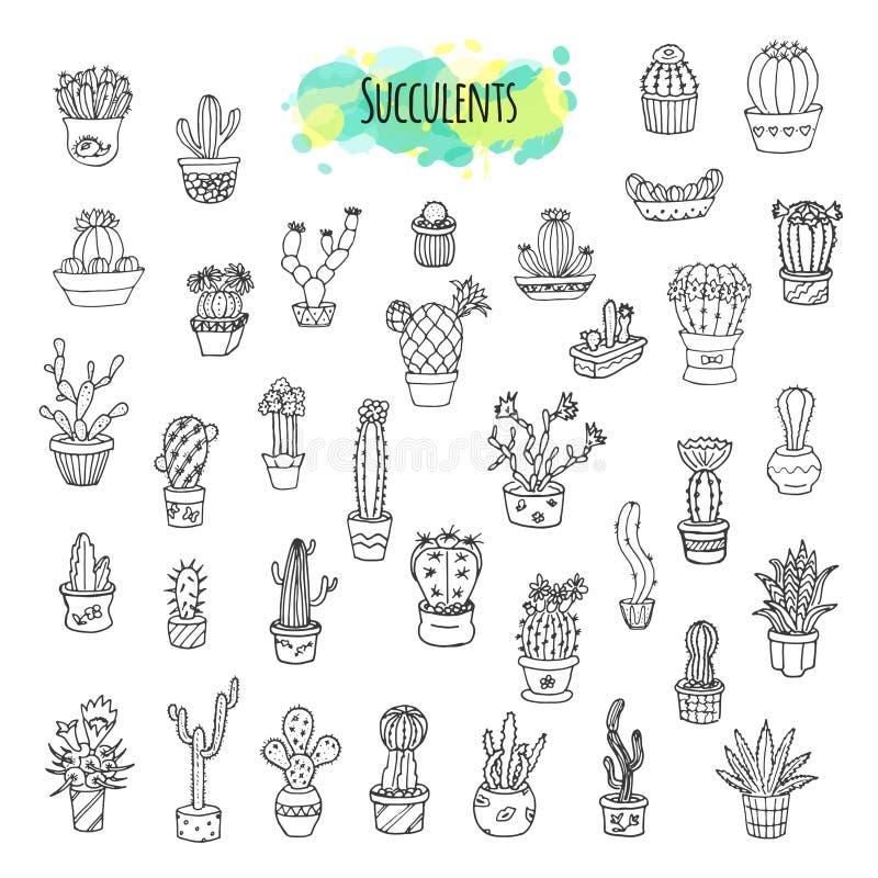Το Succulents και οι κάκτοι δίνουν το συρμένο σύνολο απεικόνιση αποθεμάτων