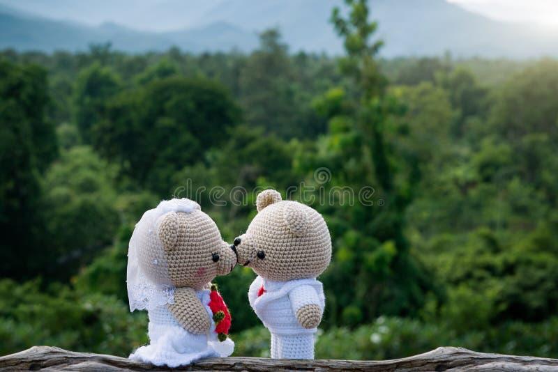 Το Teddy αντέχει το γάμο στοκ εικόνες
