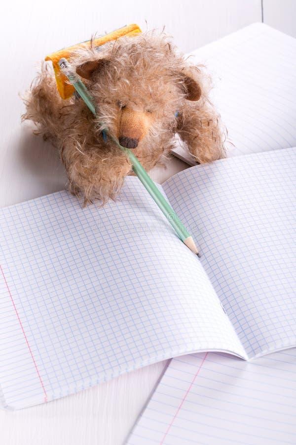 Το Teddy αντέχει το μαθητή στοκ εικόνες με δικαίωμα ελεύθερης χρήσης
