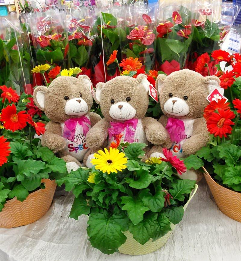 Το Teddy αντέχει με τα λουλούδια στοκ εικόνα με δικαίωμα ελεύθερης χρήσης