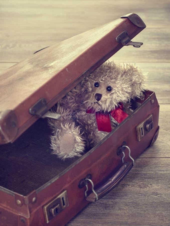 Το Teddy αντέχει στη βαλίτσα στοκ φωτογραφίες με δικαίωμα ελεύθερης χρήσης
