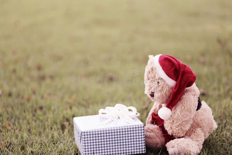 Το Teddy αντέχουν και τα κιβώτια δώρων στο χορτοτάπητα διανυσματική απεικόνιση