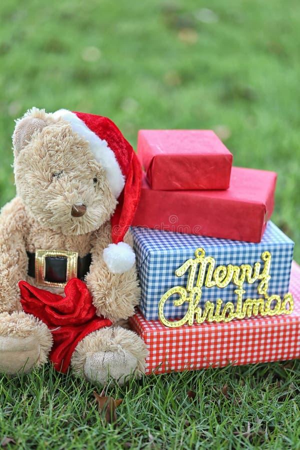 Το Teddy αντέχουν και τα κιβώτια δώρων στο χορτοτάπητα απεικόνιση αποθεμάτων