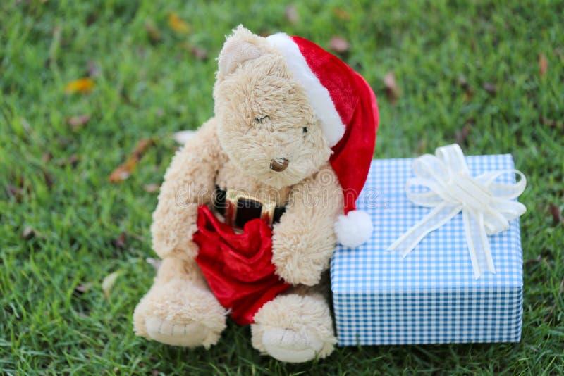 Το Teddy αντέχουν και τα κιβώτια δώρων στο χορτοτάπητα ελεύθερη απεικόνιση δικαιώματος