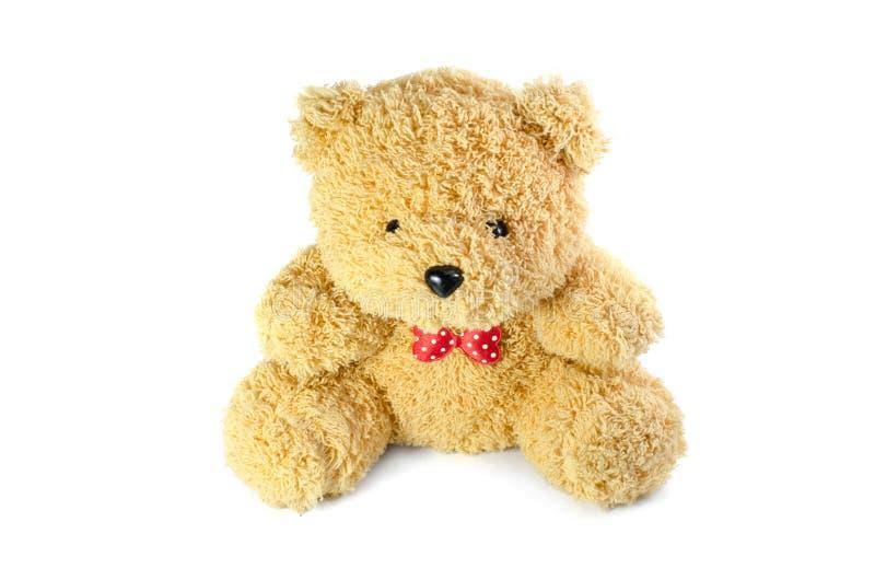 Το Teddy αφορά την απομόνωση το άσπρο υπόβαθρο στοκ φωτογραφίες