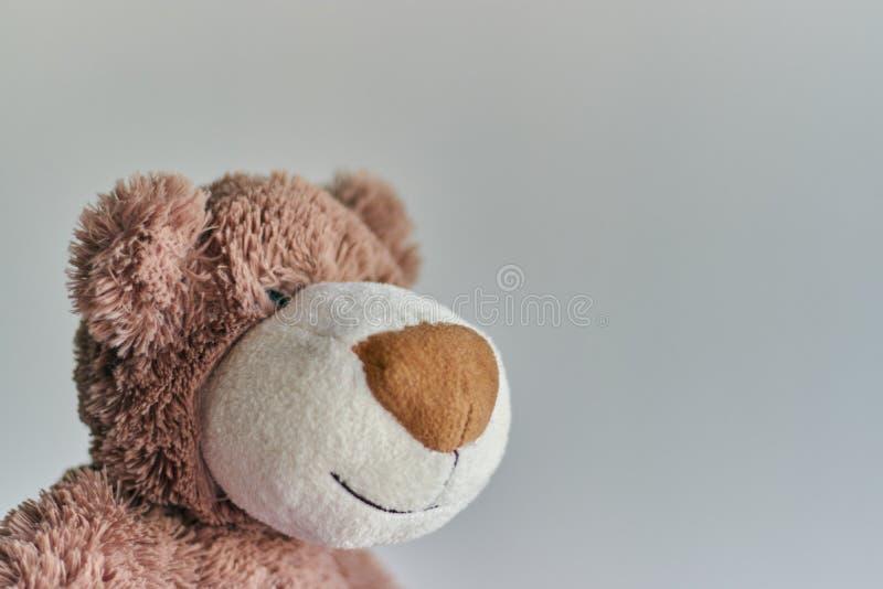 Το Teddy το παιχνίδι teddy αφορά απομονωμένος ένα ελαφρύ υπόβαθρο κινηματογράφηση σε πρώτο πλάνο του κεφαλιού μιας teddy αρκούδας στοκ φωτογραφία με δικαίωμα ελεύθερης χρήσης