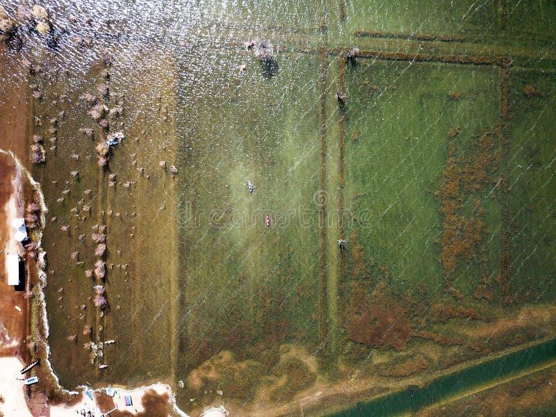 Τράπεζα λιμνών άποψης πουλιών το φθινόπωρο στοκ εικόνες με δικαίωμα ελεύθερης χρήσης
