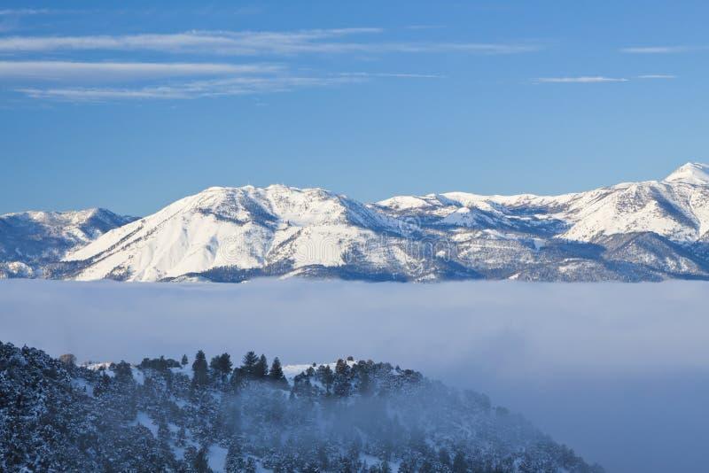 Τράπεζα ομίχλης στις οροσειρές στοκ εικόνα