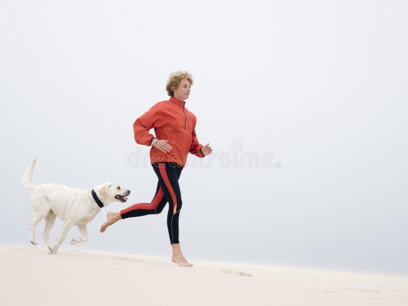τρέξιμο αμμόλοφων στοκ εικόνες