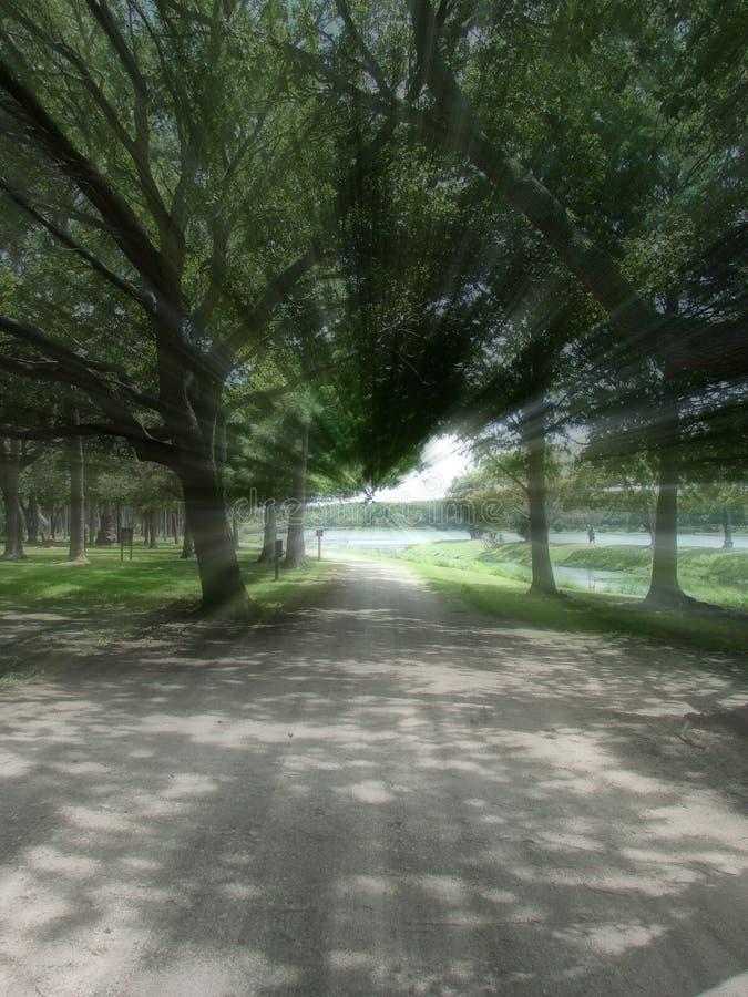τρέξιμο πάρκων στοκ εικόνες
