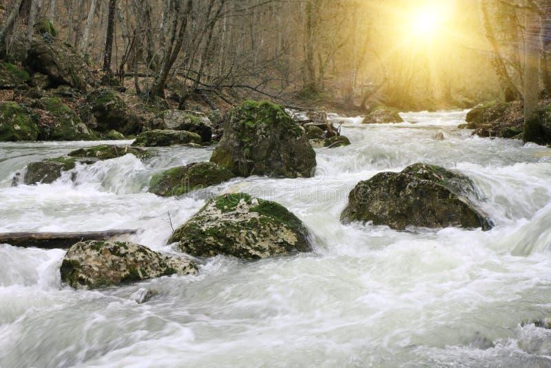 τρέξιμο ποταμών βουνών στοκ εικόνα
