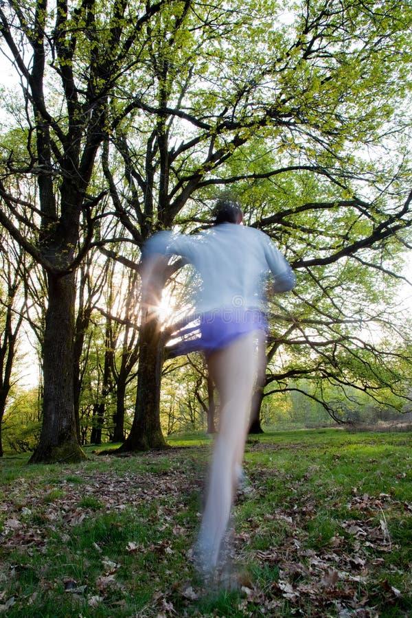 τρέχοντας ίχνος στοκ φωτογραφίες