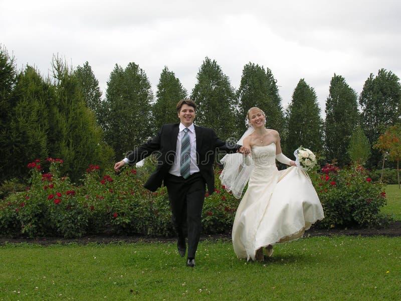 τρέχοντας δέντρα νεόνυμφων &n στοκ φωτογραφία με δικαίωμα ελεύθερης χρήσης