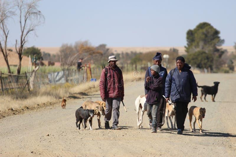Τρία άτομα μαύρων Αφρικανών με τα σκυλιά τους σε μια αγροτική περιοχή στοκ φωτογραφίες με δικαίωμα ελεύθερης χρήσης