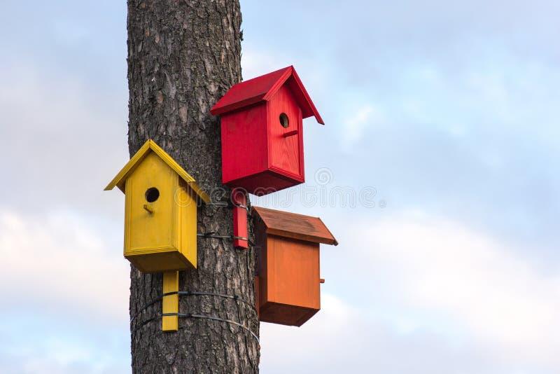 Τρία από τα ζωηρόχρωμα ξύλινα birdhouses σε ένα δέντρο ενάντια στο θερινό μπλε ουρανό στοκ εικόνα με δικαίωμα ελεύθερης χρήσης