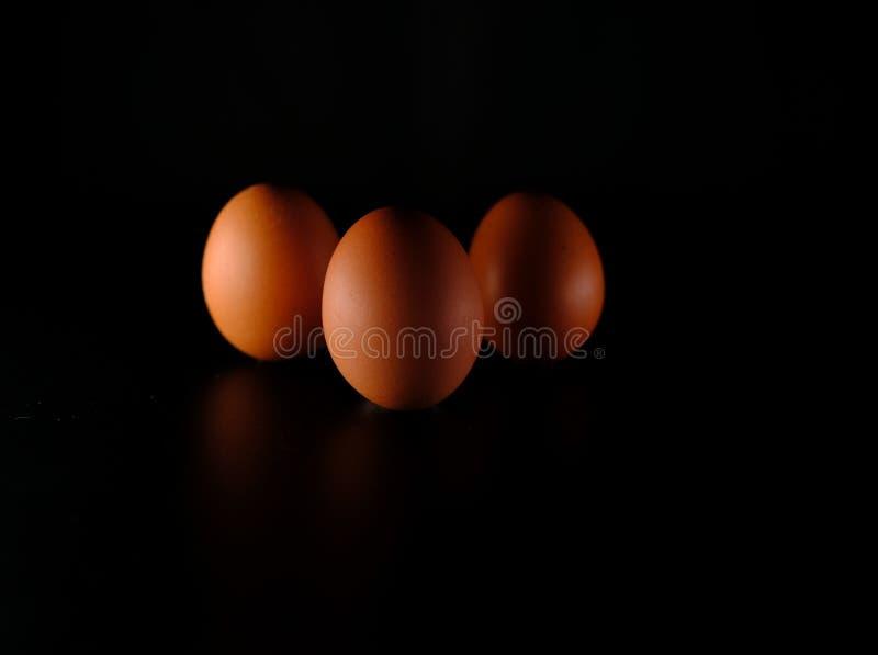 Τρία αυγά στο Μαύρο στοκ εικόνα