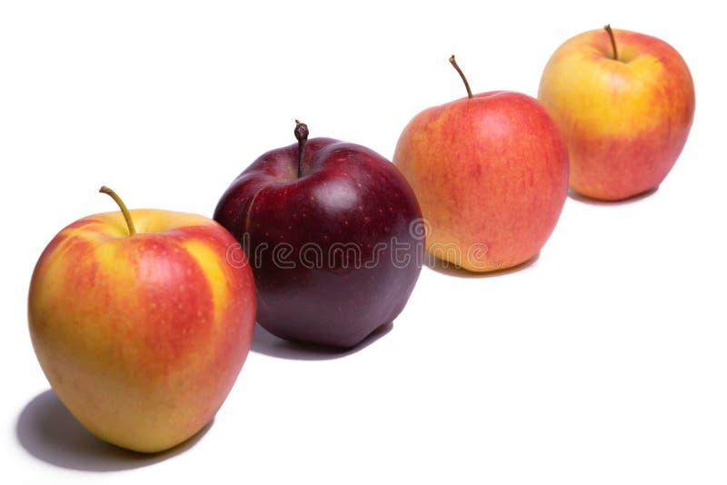 Τρία κίτρινα μήλα και ένα κόκκινο μήλο στοκ φωτογραφία