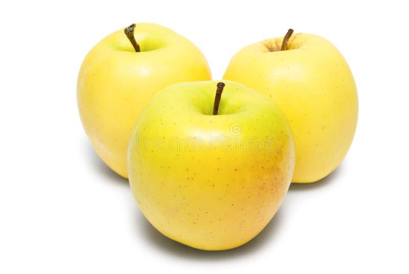 Τρία κίτρινα μήλα στοκ εικόνα με δικαίωμα ελεύθερης χρήσης