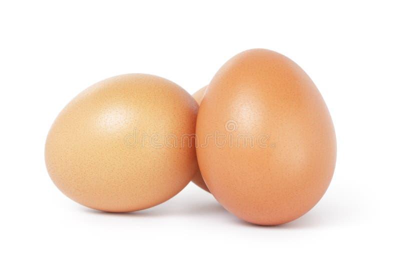 Τρία καφετιά αυγά κοτόπουλου στοκ φωτογραφίες
