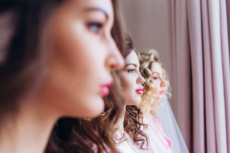 Τρία κορίτσια γιορτάζουν ένα κόμμα ή γενέθλια αγάμων στοκ φωτογραφίες με δικαίωμα ελεύθερης χρήσης