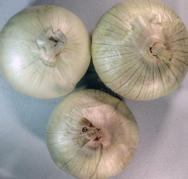 Τρία κρεμμύδια από την κορυφή στοκ φωτογραφία με δικαίωμα ελεύθερης χρήσης