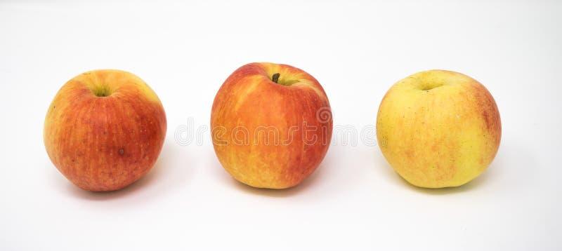 Τρία μήλα σε μια άσπρη ανασκόπηση στοκ φωτογραφίες με δικαίωμα ελεύθερης χρήσης