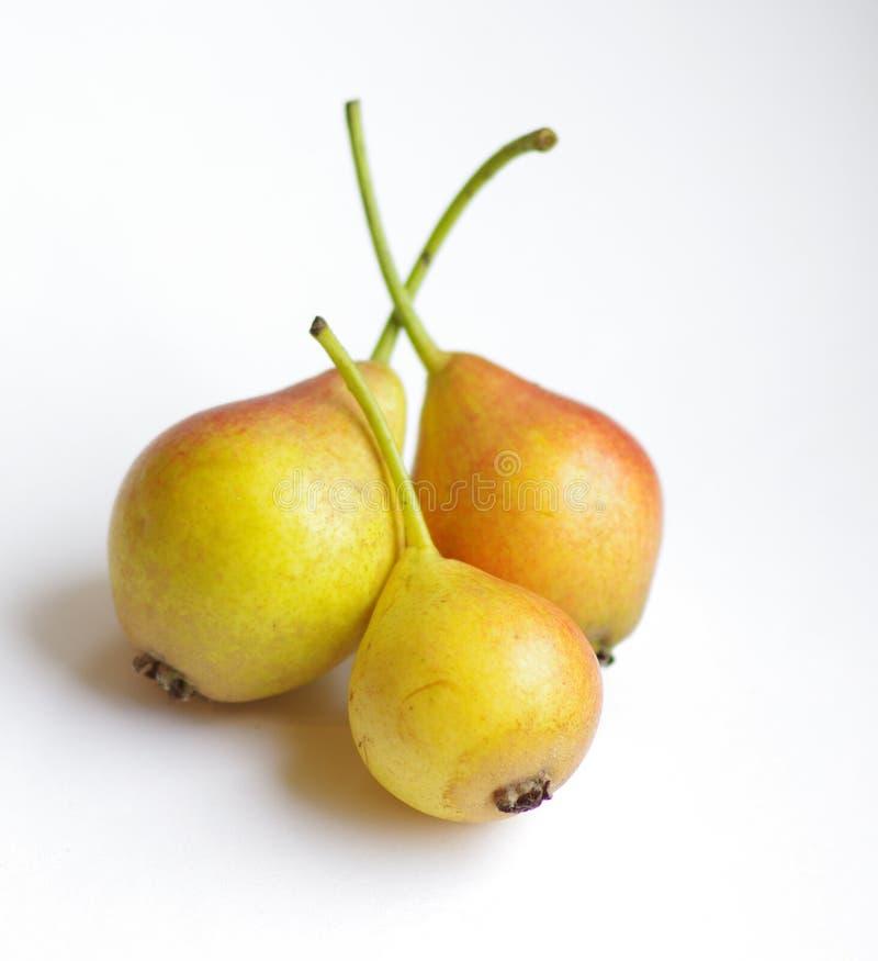Τρία μικρά αχλάδια στοκ φωτογραφία με δικαίωμα ελεύθερης χρήσης