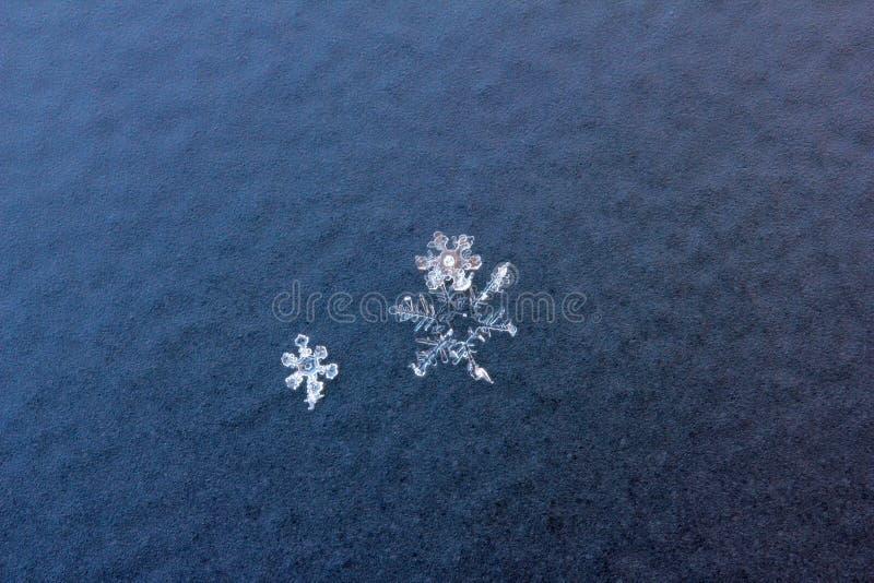 Τρία μικρά snowflakes στοκ εικόνα