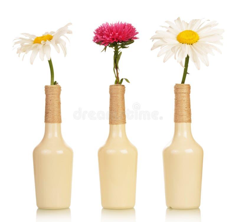 Τρία λουλούδια στα βάζα στοκ εικόνα