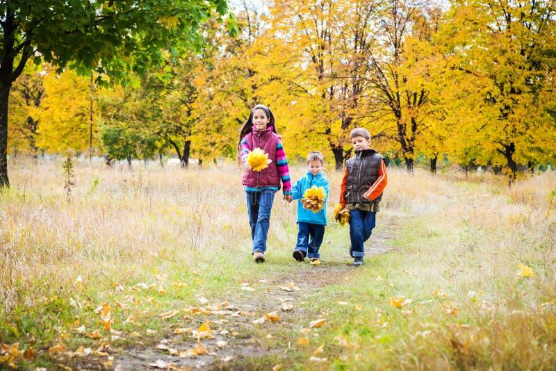 Τρία παιδιά που περπατούν στο πάρκο φθινοπώρου στοκ εικόνα