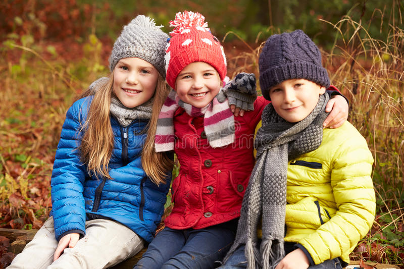 Τρία παιδιά στον περίπατο μέσω της χειμερινής δασώδους περιοχής στοκ εικόνες