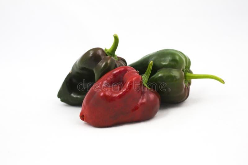 Τρία πιπέρια της Χιλής poblano στοκ εικόνες