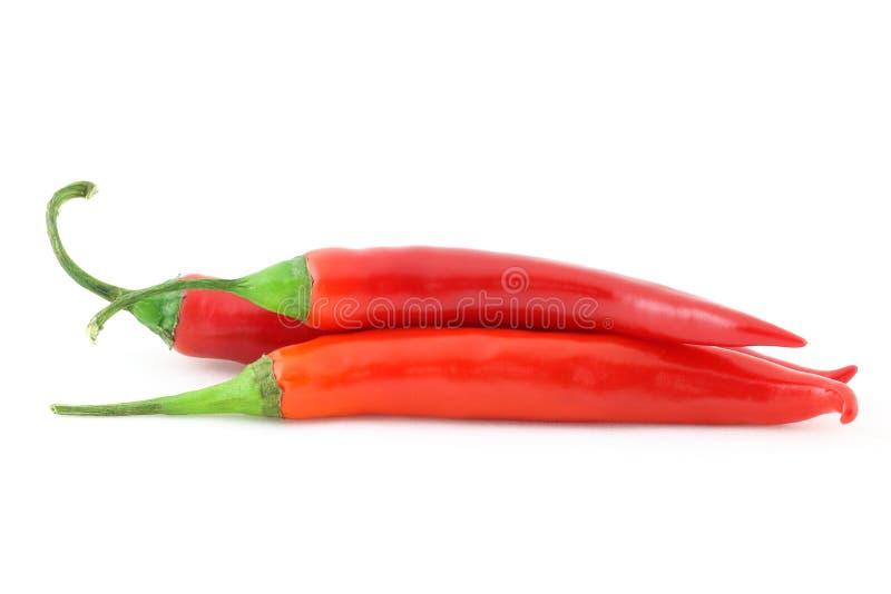 Τρία πιπέρια chiili στο κόκκινο χρώμα, που απομονώνεται στο λευκό στοκ εικόνες με δικαίωμα ελεύθερης χρήσης