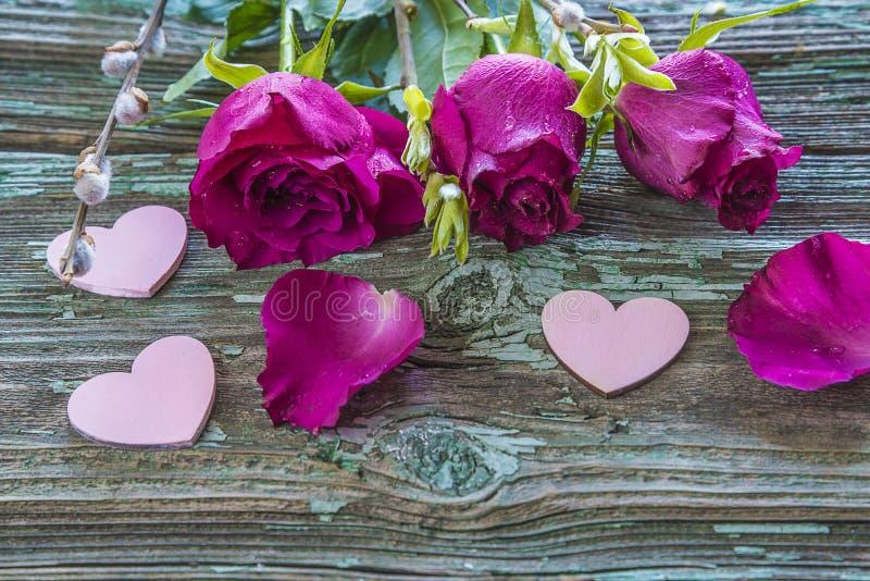 Τρία πορφυρά τριαντάφυλλα με τα waterdrops και τις ρόδινες καρδιές στοκ φωτογραφία