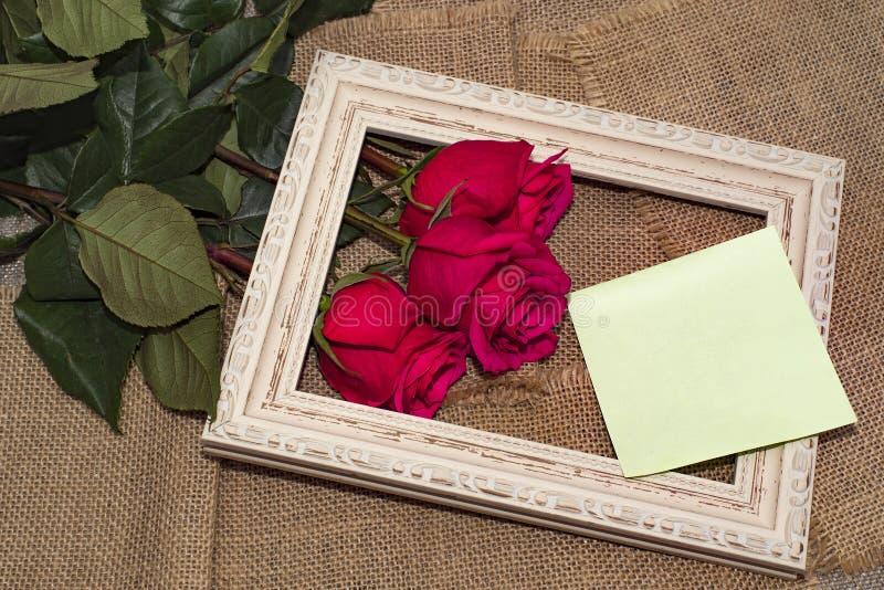Τρία τριαντάφυλλα σε ένα πλαίσιο στοκ φωτογραφίες με δικαίωμα ελεύθερης χρήσης