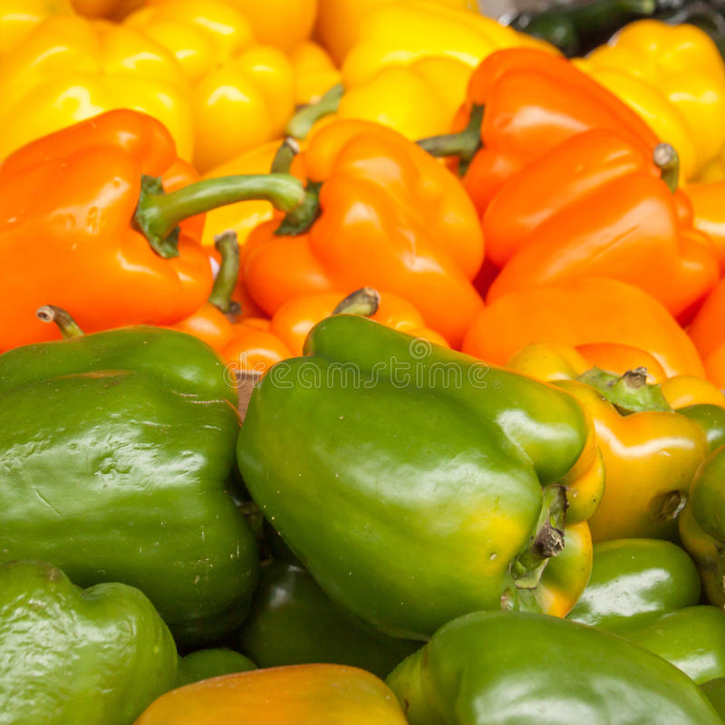 Τρία χρώματα του τετραγώνου πιπεριών κουδουνιών στοκ εικόνες