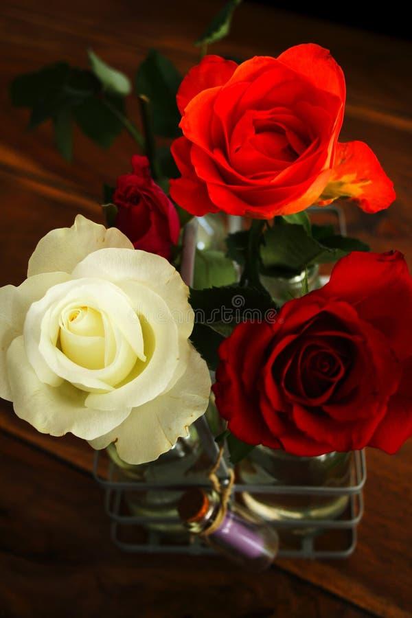 Τρία όμορφα τριαντάφυλλα στοκ φωτογραφία με δικαίωμα ελεύθερης χρήσης