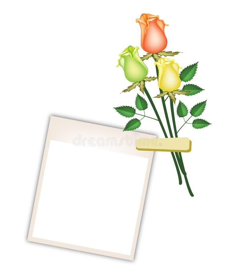 Τρία όμορφα τριαντάφυλλα με τα κενά πλαίσια φωτογραφιών ελεύθερη απεικόνιση δικαιώματος